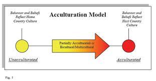 akulturasi model